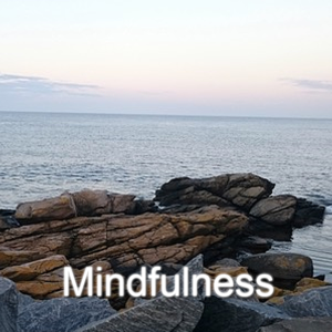 Mindfulness kursusikon
